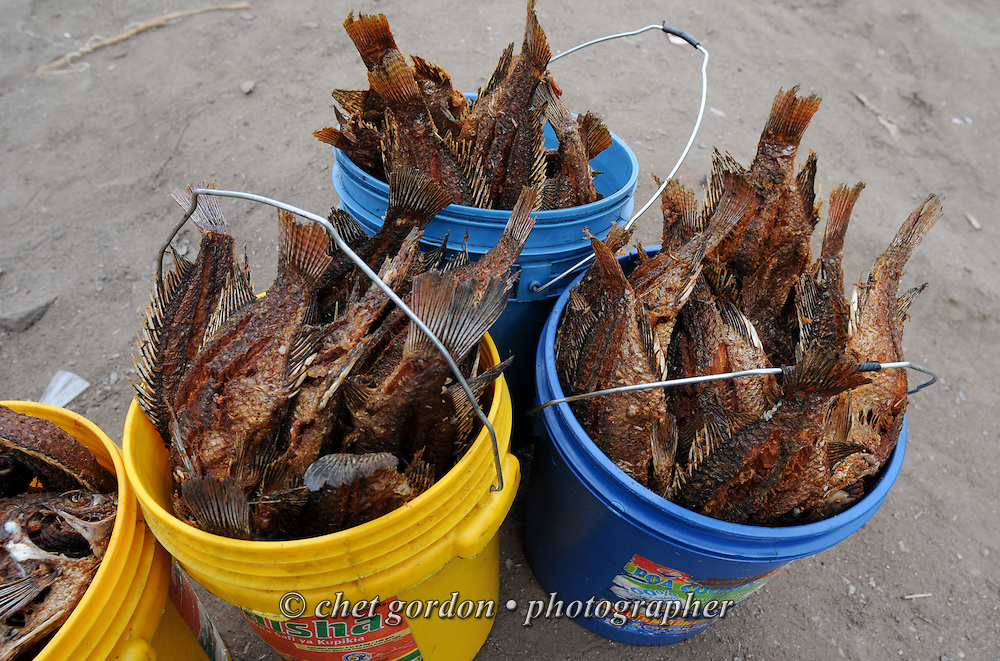 MWANZA, TANZANIA.  Fried tilapia fish for sale in buckets at an outdoor market on the shore of Lake Victoria in Mwanza, Tanzania on Thursday, September 4, 2014.   © Chet Gordon/THE IMAGE WORKS