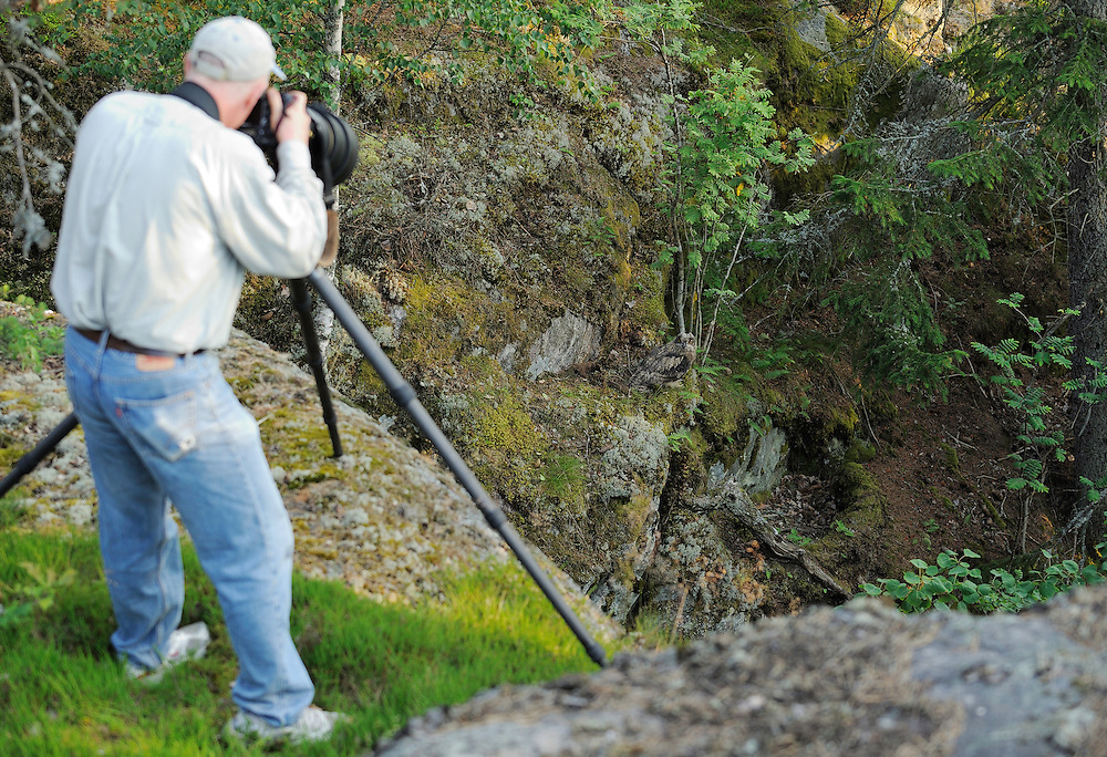 Staffan Widstrand photographing an Eagle owl chick, Bubo bubo, Morko, Sormland, Sweden, photo by Fredrik Hylten-Cavallius