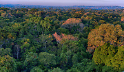 The canopy of the Amazon rainforest. Area of Cristalino, southern Amazon, Brazil.