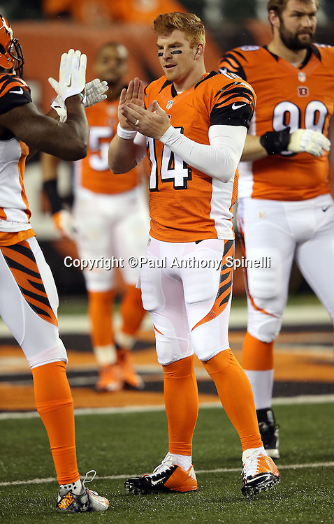 Cincinnati Bengals quarterback Andy Dalton (14) claps his hands while warming up before the 2015 week 10 regular season NFL football game against the Houston Texans on Monday, Nov. 16, 2015 in Cincinnati. The Texans won the game 10-6. (©Paul Anthony Spinelli)
