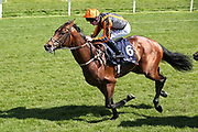 TELECASTER (6) ridden by Oisin Murphy and trained by Hughie Morrison winning The Group 2 Al Basti Equiworld Dubai Dante Stakes over 1m 2f (£165,000)  during the second day of the Dante Festival at York Racecourse, York, United Kingdom on 16 May 2019.