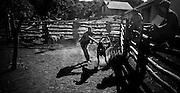 Larsen Ranch, Caraparicito