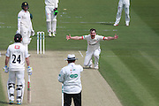 Leicestershire bowler Ben Raine takes the wicket of Sussex batsman Matt Machan during the Specsavers County Champ Div 2 match between Sussex County Cricket Club and Leicestershire County Cricket Club at the 1st Central County Ground, Hove, United Kingdom on 1 May 2016. Photo by Bennett Dean.