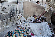 "An homeless, heroin user, sleep between a group of drug addicts, who share smoke doses of white powder in an hidden street. Karachi, Pakistan, on friday, December 05 2008.....""Pakistan is one of the countries hardest hits by the narcotics abuse into the world, during the last years it is facing a dramatic crisis as it regards the heroin consumption. The Unodc (United Nations Office on Drugs and Crime) has reported a conspicuous decline in heroin production in Southeast Asia, while damage to a big expansion in Southwest Asia. Pakistan falls under the Golden Crescent, which is one of the two major illicit opium producing centres in Asia, situated in the mountain area at the borderline between Iran, Afghanistan and Pakistan itself. .During the last 20 years drug trafficking is flourishing in the Country. It is the key transit point for Afghan drugs, including heroin, opium, morphine, and hashish, bound for Western countries, the Arab states of the Persian Gulf and Africa..Hashish and heroin seem to be the preferred drugs prevalence among males in the age bracket of 15-45 years, women comprise only 3%. More then 5% of whole country's population (constituted by around 170 milion individuals),  are regular heroin users, this abuse is conspicuous as more of an urban phenomenon. The substance is usually smoked or the smoke is inhaled, while small number of injection cases have begun to emerge in some few areas..Statistics say, drug addicts have six years of education. Heroin has been identified as the drug predominantly responsible for creating unrest in the society."""