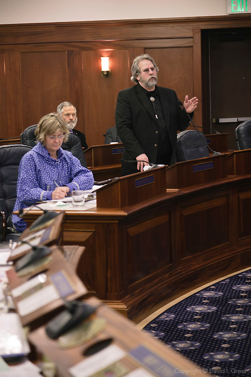 Rep. David Guttenberg speaks to the Alaska State House of Representatives.