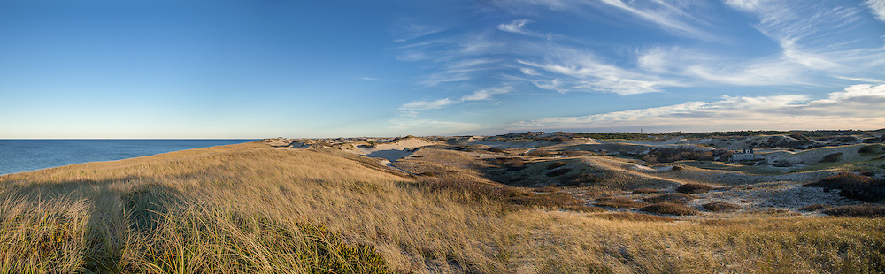 A sweeping view of the Provincelands area near the C-Scape dune shack.