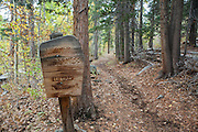 Images from Green Creek Road and Green Creek Trail, which leads into the Hoover Wilderness. The Hoover Wilderness abuts the north and east ends of Yosemite National Park, yet is an often overlooked wilderness area, allowing for quiet and solitude just a short distance from highway 395.