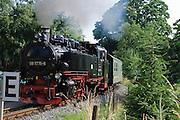 Lößnitzgrund mit Dampfeisenbahn Lößnitzdackel, Dresden, Sachsen, Deutschland.|.Loessnitz valley with steam train, Dresden, Saxony, Germany.