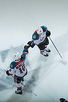 KELOWNA, CANADA - APRIL 8: Nick Merkley #10 and Cal Foote #25 of the Kelowna Rockets celebrate a third period goal against the Portland Winterhawks on April 8, 2017 at Prospera Place in Kelowna, British Columbia, Canada.  (Photo by Marissa Baecker/Shoot the Breeze)  *** Local Caption ***