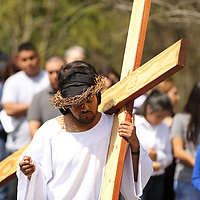 """Christian Acosta carries his cross as """"Jesus Christ"""" as part of the Stations of the Cross Friday at St. James Catholic Church in Tupelo."""