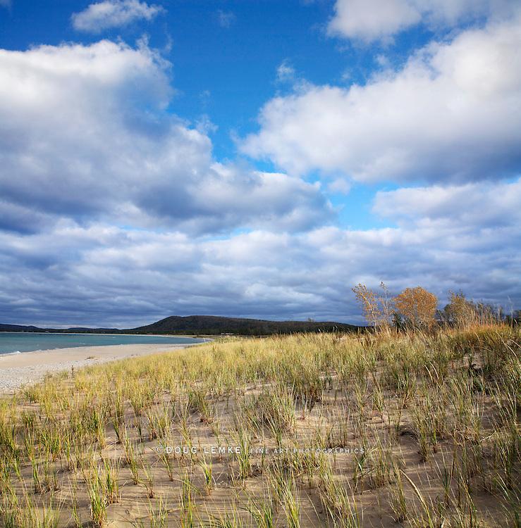 Beach Grass And The Lake Michigan Coast At Sleeping Bear Point, Glen Haven Michigan, USA