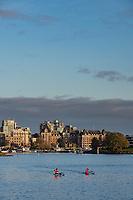 Kayakers in Victoria Inner Harbour paddle towards the BC city in the early sunset.