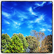 Cirrus Clouds, Lee's Summit, MO