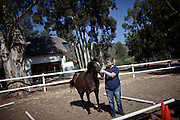 Yvette de Wet - age 33 - Yvette is pictured here with Blaze in a volunteer equine assisted psychotherapy session at Montrose, 26 December 2011..Equine assisted therapy at De Grendel farm Cape Town, through the Montrose clinic and foundation.The clinic treats patients with addiction illnesses such as alcoholism and eating disorders and the foundation is a charity that helps with street children from the townships...