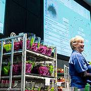 Corporate - Royal FloraHolland