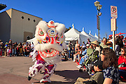 """14 FEBRUARY 2010 - PHOENIX, AZ: Performers do the Lion Dance, a traditional Chinese dance during the Chinese New Year celebration in Phoenix, AZ. This marks the Chinese """"Year of the Tiger."""" The Chinese New Year Celebration at the COFCO Chinese Cultural Center in Phoenix attracted thousands of people. The celebration featured traditional Chinese entertainment and food.  PHOTO BY JACK KURTZ"""