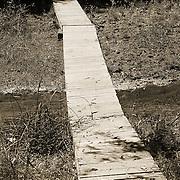 A footbridge over a section of the Hassayampa River - Hassayampa River Preserve, Wickenburg, AZ