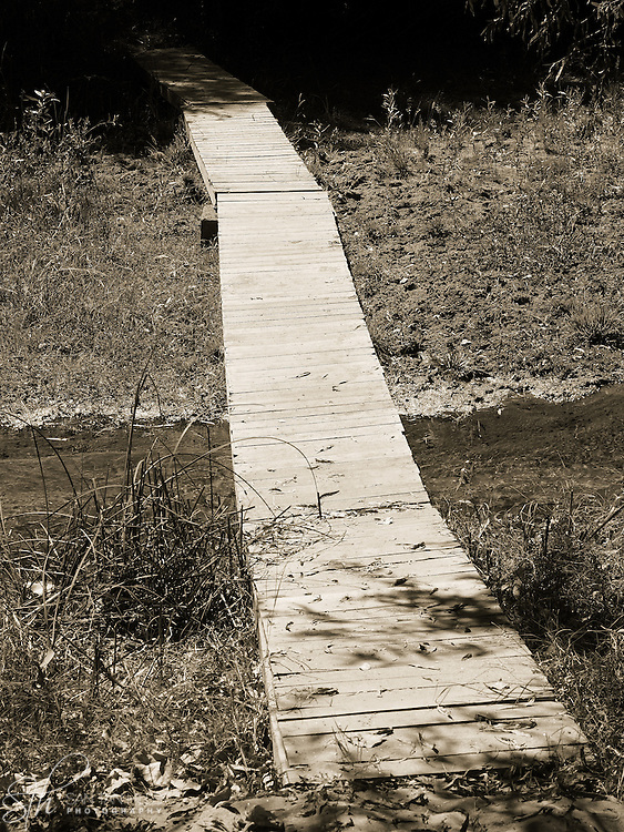 A footbridge over a section of the Hassayampa River - Hassayampa River Preserve, Wickenburg, AZ