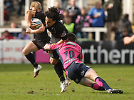 Picture by Steven Hadlow/Focus Images Tane Tu'ipulotu of astle Falcons and Ceri Sweeny of Cardiff Blues during their Amlin Challenge Cup quarter-final match