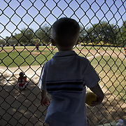 18 month-old Talon Field watches the baseball game between the Angels and Cardinals that Navy Reserve commander Pat Rattan coached in Sacramento, California. Pat was deployed to Iraq and missed the 2007 season, which ended in June.