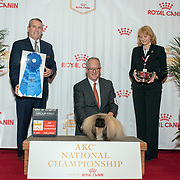 AKC National Championship 12/15/2018