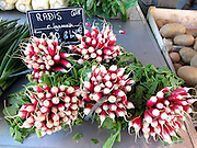 Radishes for sale in the market at Croix-Rousse, Lyon