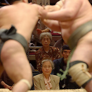 "Two attentive fans watch the action at the Tokyo Spring ""basho"" at Kokugikan."