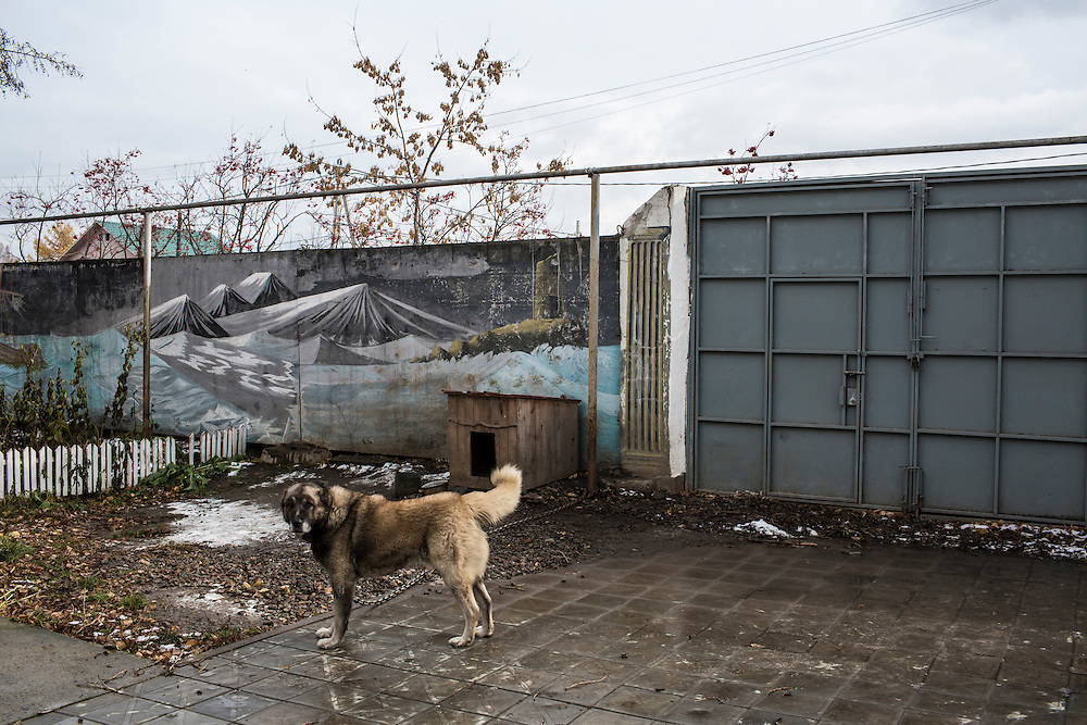 YEKATERINBURG, RUSSIA - OCTOBER 16: A guard dog stands in front of a mural painted by patients at City Without Drugs on October 16, 2013 in Yekaterinburg, Russia. City Without Drugs is a well-known narcotics treatment program in Russia founded by Yevgeny Roizman, who was elected mayor of Yekaterinburg in September 2013. (Photo by Brendan Hoffman/Getty Images) *** Local Caption ***