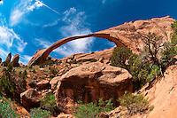 Landscape Arch, Arches National Park, near Moab, Utah USA