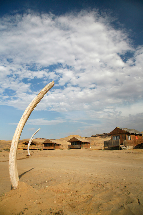Angola, Namibe Province, Iona National Park. Flamingo lodge Fishing camp in the desert on the Atlantic coast. Whale bones form the boundaries of the lodge.<br /> <br /> Photo: &copy; Zute &amp; Demelza Lightfoot