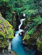 Gorge along Avalanche Creek, Glacier National Park, Montana