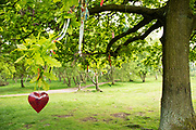 Derbyshire, UK – June 03 2016: Offerings tied to a sacred memorial Oak tree that stands beside Nine Ladies stone circle on Stanton Moor