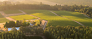 Aerial view over Open Claim Vineayards, Eola-Amity AVA, Willamette Valley, Oregon