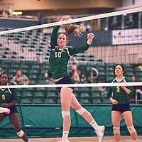 3rd year middle blocker, Brooklyn Reynolds (10) of the Regina Cougars during the Women's Volleyball home game on Sat Jan 26 at Centre for Kinesiology, Health & Sport. Credit: Arthur Ward/Arthur Images