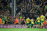 Norwich City midfielder Mario Vrancic (8) celebrates his last gasp equaliser during the EFL Sky Bet Championship match between Norwich City and Sheffield Wednesday at Carrow Road, Norwich, England on 19 April 2019.