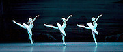 Swan Lake <br /> Bolshoi Ballet <br /> at The Royal Opera House, Covent Garden, London, Great Britain <br /> press photocall / rehearsal <br /> 29th July 2016 <br /> <br /> <br /> Three swans <br /> <br /> Olga Marchenkova<br /> Angelina Karpova <br /> Ana Turazashvili<br /> <br /> <br /> Photograph by Elliott Franks <br /> Image licensed to Elliott Franks Photography Services