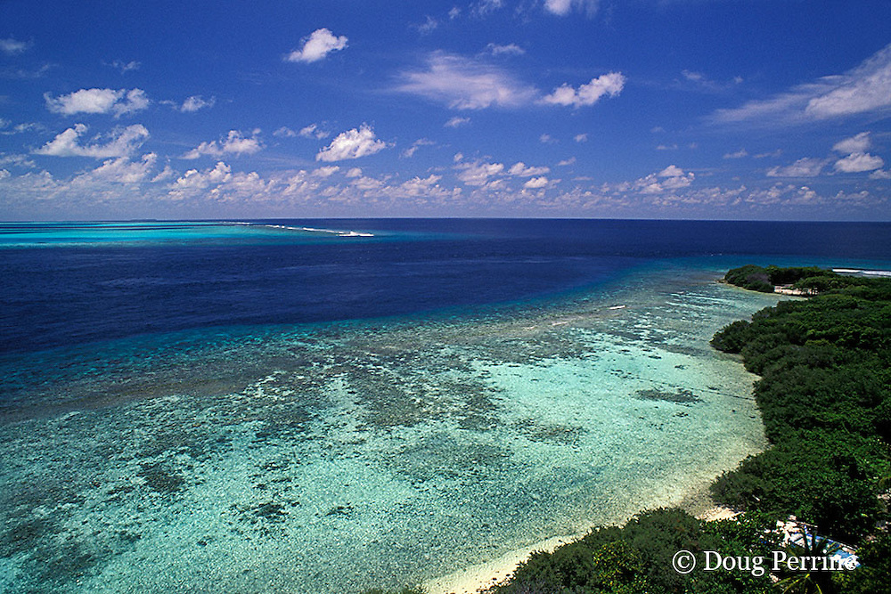 Helengeli Island, North Male Atoll, Maldives ( Indian Ocean )