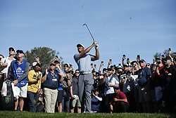 January 26, 2019 - San Diego, CA, USA - Tiger Woods hits out of the rough on the 2nd hole during the third round of the Farmers Insurance Open at the Torrey Pines Golf Course in San Diego on Saturday, Jan. 26, 2019. (Credit Image: © K.C. Alfred/San Diego Union-Tribune/TNS via ZUMA Wire)