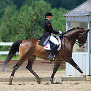 2010 Cornerstone Spring into Dressage CDI