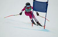 Gus Pitou Memorial GS with Gunstock Ski Club.  ©2020 Karen Bobotas Photographer