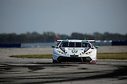 March 17-19, 2016: Mobile 1 12 hours of Sebring 2016. #27 Lawrence DeGeorge, Cedric Sbirrazzuoli, Dream Racing, Lamborghini Huracán GT3