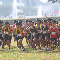 2016 National Schools Cross Country Championships