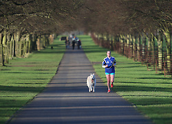 © Licensed to London News Pictures. 31/12/2015. London, UK. A jogger runs in Bushy Park. Photo credit: Peter Macdiarmid/LNP