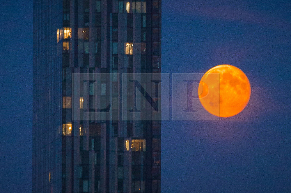 """© Licensed to London News Pictures . 23/07/2013 . Manchester , UK . A blood red moon low over the skyline of Manchester , as seen tonight (23rd July 2013 ) with Manchester's iconic Beetham Tower in the foreground . The phenomenon can be caused by dust and pollution in the atmosphere and is most notable when the moon is low on the horizon as its light passes through a larger amount of atmosphere , which scatters blue light more than red . Biblical mythology makes several references to a red moon including , from Joel 2:31 , """" The sun shall be turned to darkness, and the moon to blood, before the great and awesome day of the Lord comes"""" . Photo credit : Joel Goodman/LNP"""