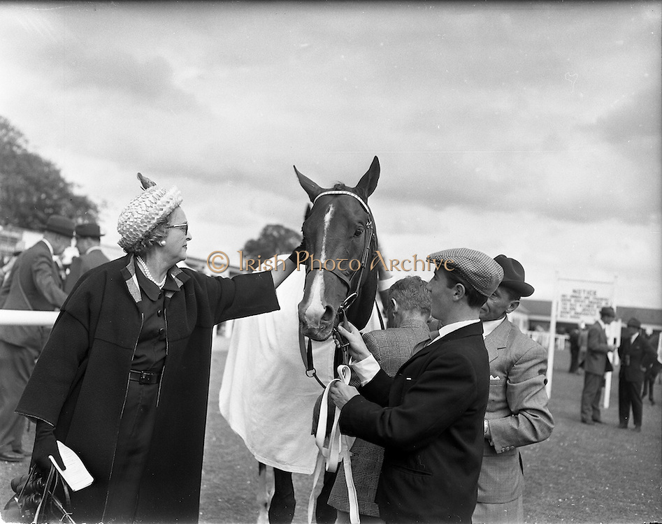 """21/06/1961<br /> 06/21/1961<br /> 21 June 1961<br /> Irish Derby at the Curragh Racecourse, Co. Kildare. Image shows """"My Highness"""" owned by Mrs Stanhope Joel with her horse """"My Highness"""" that won the Derby."""