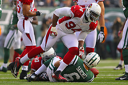 Dec 2, 2012; East Rutherford, NJ, USA; Arizona Cardinals outside linebacker Sam Acho (94) celebrates his sack of New York Jets quarterback Mark Sanchez (6) during the first half at MetLIfe Stadium.