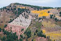 View from Aspen Mountain, Aspen, Colorado.