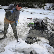 "2/17/11 -- HARPSWELL, Maine. Nate Reno, left, of Harpswell, drives  a prybar into a chunk of ice preparing to flip and move it while David Wilson Sr.  digs for softshell clams in Quahog Bay on Thursday afternoon. Reno and a friend, David Wilson, Jr. did the heavy work for the elder Wilson, whom this group contends is the best clam digger on the coast of Maine. .Quahog Bay was reopened for digging on Feb 11, 2011 after many years of closure, according to Department of Marine Resources Biotoxin Monitoring Manager, Darcie Couture. She wrote, ""This area had been closed for many years due to failing water quality, caused by bacterial pollution. A serious pollution source was recently identified and remediated.  The area will close in June for the summer, because unfortunately, this area, like many others on the Maine coast, suffer from the increased pressure of a seasonal summer population, which negatively impacts water quality, and results in many of our shellfish resources remaining closed to harvest during that time."" Photo by Roger S. Duncan."