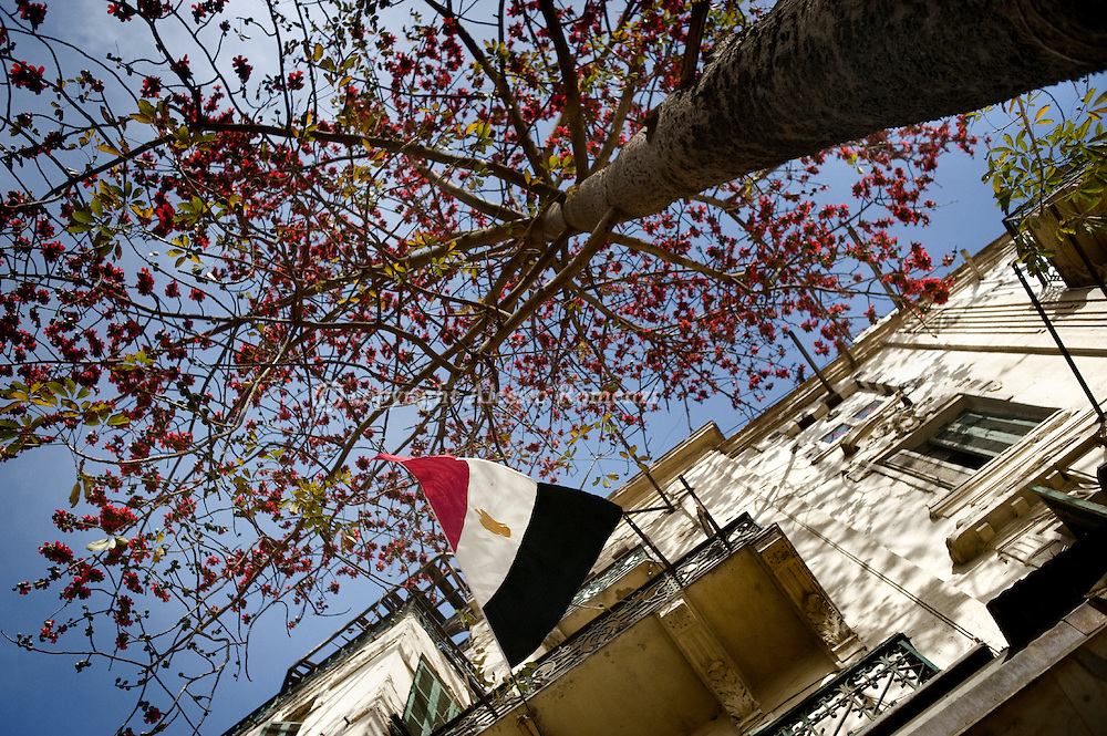 EGYPT, Cairo : Egyptian flag waving under a colored tree in Tahrir square in Cairo on March 19, 2011. Egyptians got their first taste of democracy in a referendum to a package of constitutional changes after president Hosni Mubarak was forced to relinquish his 30-year grip on power last month in the face of mass street protests. ALESSIO ROMENZI