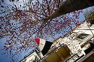 2011 - Egyptian referendum